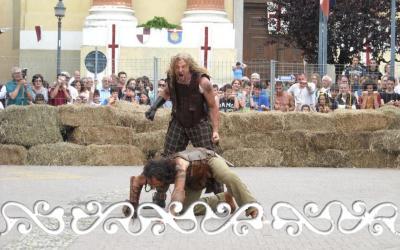 pavone ferie medievali 2012 celti fight warrior celts guerrieri celt